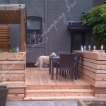 Wood Deck with Dog