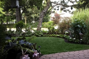 affordable lawn service Toronto