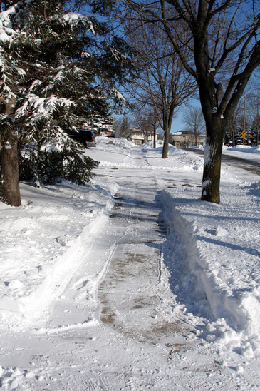 A freshly shoveled sidewalk after a winter snow fall.